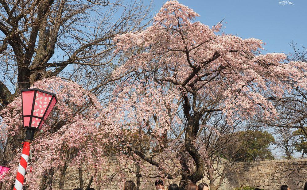 大阪景點》大阪城公園 賞櫻景點推薦 天守閣必訪! @陳小沁の吃喝玩樂