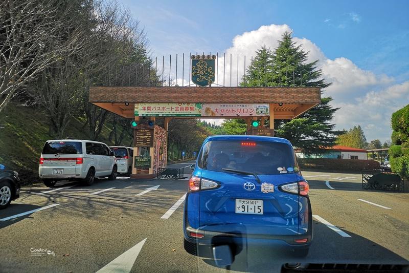 九州自然野生動物園|九州必去景點!可以餵獅子,叢林巴士必搭!時間預約攻略!