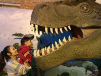 侏儸紀X恐龍樂園特展|台北華山互動有趣的侏儸紀展!還可搭探險車看恐龍展喔! @陳小沁の吃喝玩樂