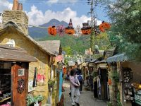 Yufuin Floral Village|歐洲童話小鎮,走入超夢幻北歐村莊,由布院必去景點 @陳小沁の吃喝玩樂