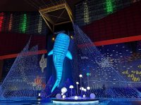 大阪海遊館|超好玩的海遊館!看海獅海豹海豚超大鯨鯊療癒!親子行程必訪! @陳小沁の吃喝玩樂