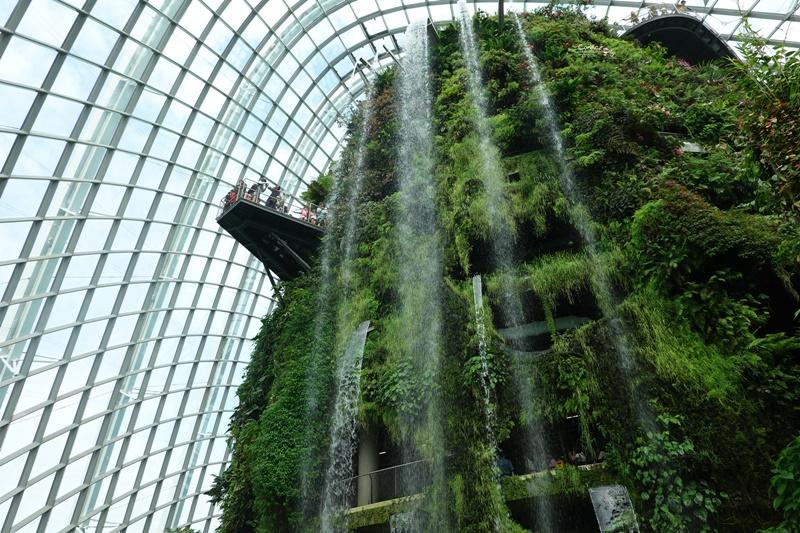 濱海灣花園|花穹/雲霧林,門票先買便宜!花園中的城市溫室:新加坡必訪景點!