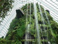 濱海灣花園|花穹/雲霧林,門票先買便宜!花園中的城市溫室:新加坡必訪景點! @陳小沁の吃喝玩樂