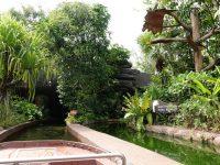 河川生態園|超好玩亞馬遜河川體驗,遊覽船小孩超愛的新加坡親子景點 @陳小沁の吃喝玩樂