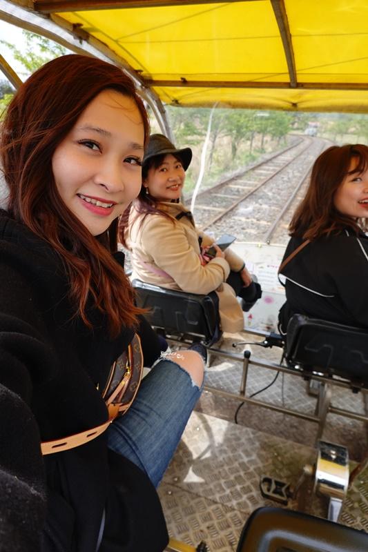 濟州鐵路公園|濟州鐵路自行車,邊看油菜花邊騎電動車,還有牛馬可以看,超好玩!