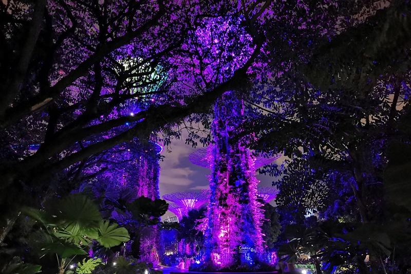OCBC SKYWAY|必去超級樹空中走廊,在上面看超級樹燈光秀超漂亮!