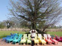 ECOLAND 森林小火車 濟州島超可愛景點!搭乘小火車玩花園,超好拍! @陳小沁の吃喝玩樂