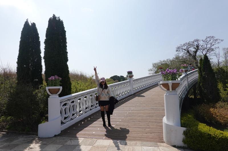 ECOLAND 森林小火車|濟州島超可愛景點!搭乘小火車玩花園,超好拍!