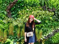 【開箱】GUCCI虎頭相機包,紅綠背帶,好穿搭容量大(GG Supreme messenger bag) @陳小沁の吃喝玩樂