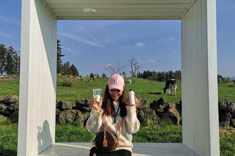 아침미소목장 早晨微笑牧場|藍天白雲牧場牛奶必喝,冰淇淋製作好玩!
