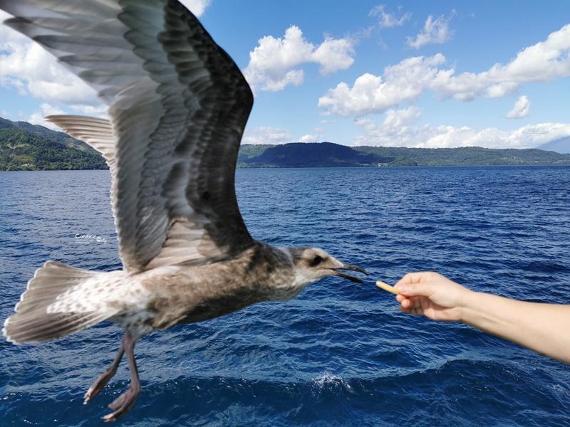 洞爺湖汽船|必搭乘洞爺湖遊覽船賞湖一圈,登中島欣賞湖畔美景!