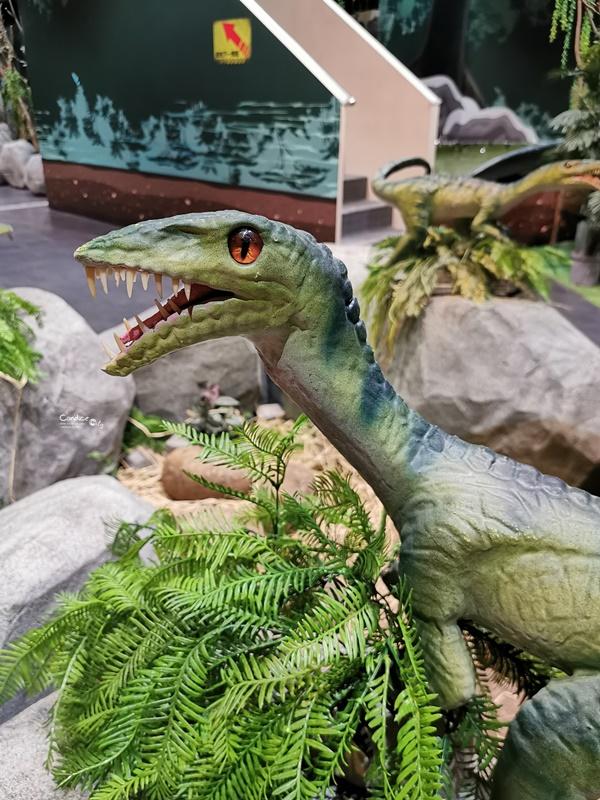 侏羅紀X恐龍水世界|獨木舟進場!許多互動設施超好玩(台北科教館)