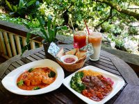 19號咖啡館|坐落山林中的白色木屋咖啡廳,陽明山餐廳推薦! @陳小沁の吃喝玩樂