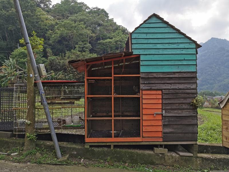 一畝田露營區|超享受南非狩獵帳免搭帳!有沙坑漂漂河的苗栗親子露營區!