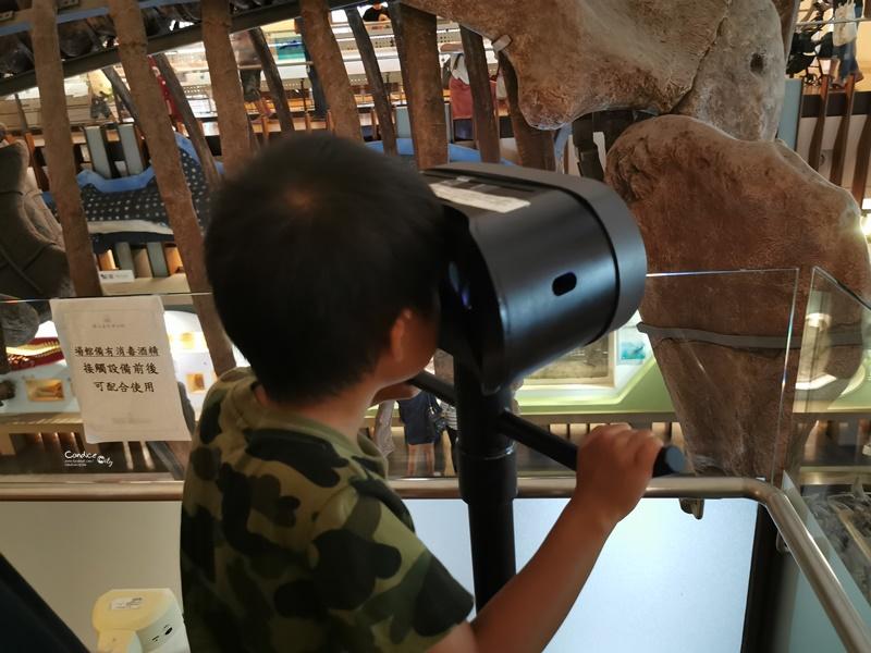 臺灣博物館土銀展示館|巨型恐龍出現台北車站!勸業銀行舊廈,台北景點!