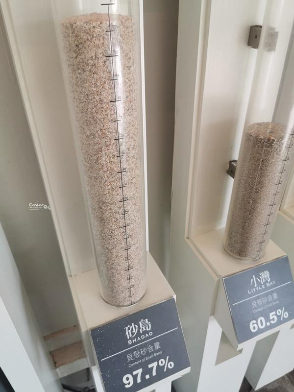 砂島貝殼砂展示館|97%貝殼砂含量,沒開放的墾丁沙灘秘境!