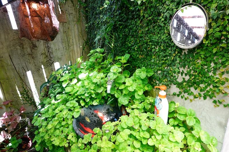 cheela 小屋咖啡館|特美的小後花園,超讚台東咖啡廳!