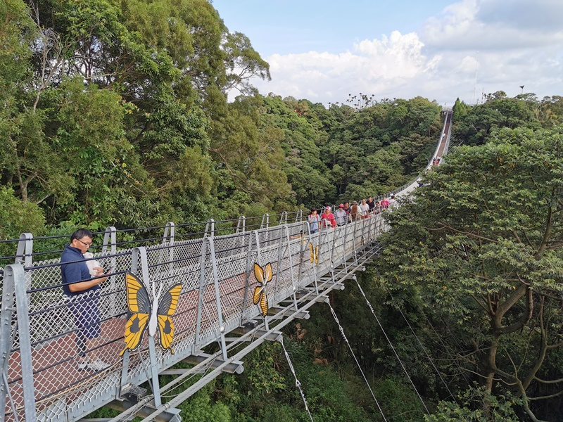 猴探井天空之橋|漂亮南投景點,走步道看風景坐搖椅看小動物!
