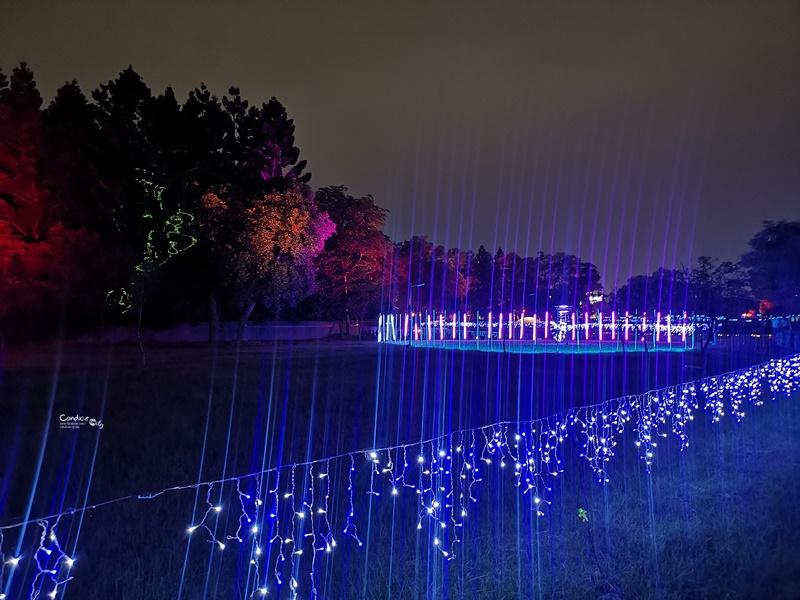 嘉義光織影舞展|落在水面上超美大月亮,光影變化超美麗!10月限定!
