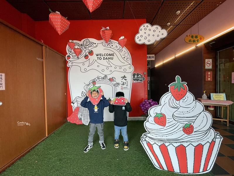 草莓文化館|草莓系大湖伴手禮!草莓豆腐乳/草莓香腸/草莓酒