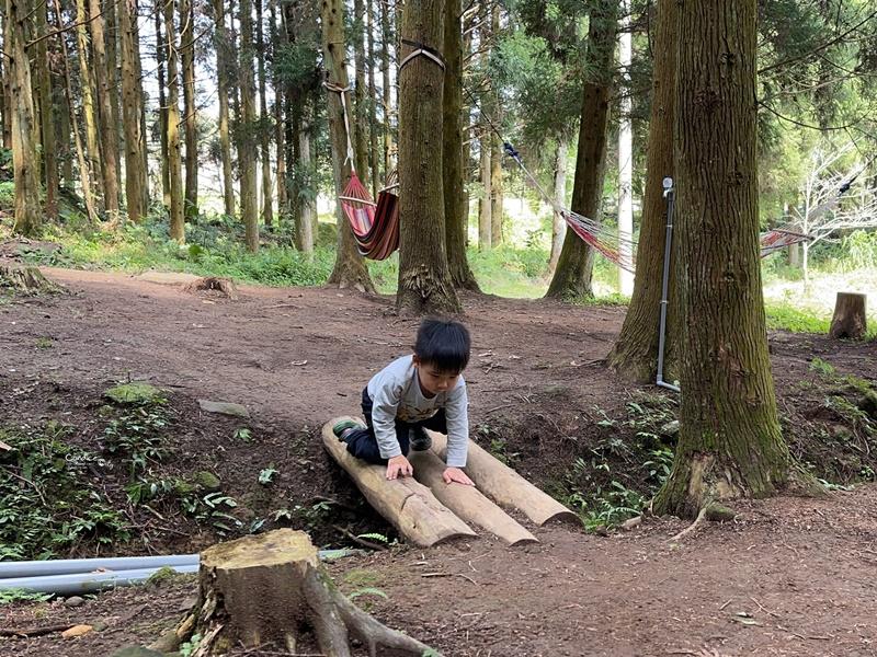 撒萬露營區|苗栗森林系露營區!櫻花季極美!圍繞吉野櫻樹下搭營!