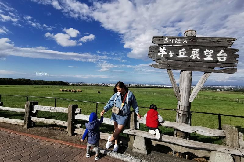【北海道自由行】超強北海道自由行10天9夜自駕行程表!推薦行程+機加酒花費!